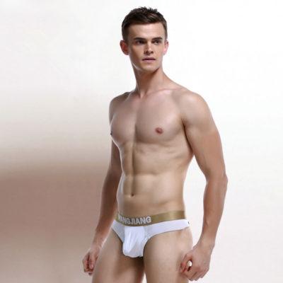 Cool Ice Silk Thongs G-Strings Men Underwear